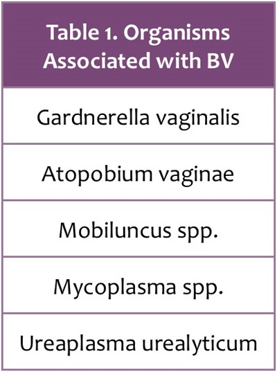 Bacterial Vaginosis (BV) Smells different than a Yeast Infection Does