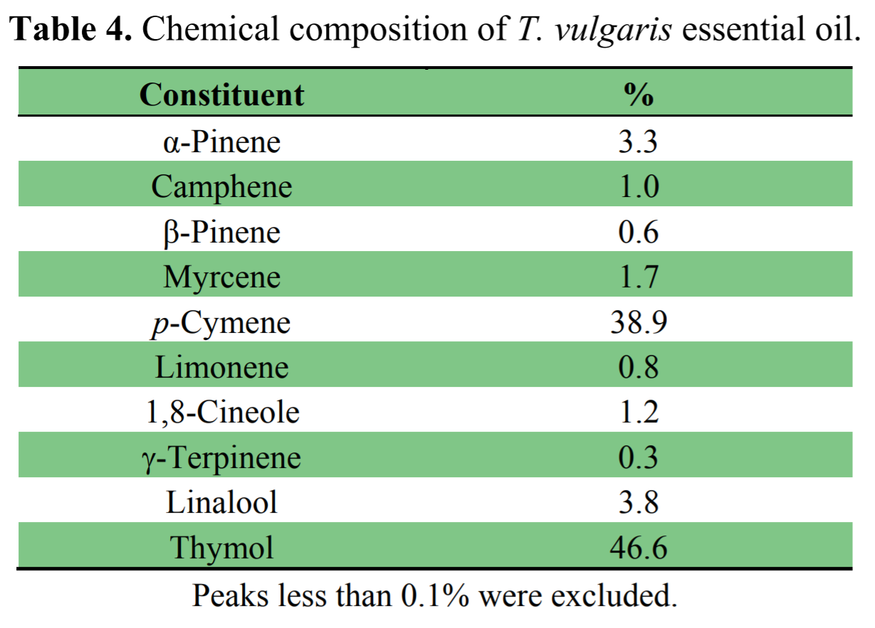 The amount of thymol in the study's essential oil was about half; however there was not a significant level of carvacrol present. Given the variations of chemical content in this oil, it is hard to tell if Thymus pulegioides is more desirable.
