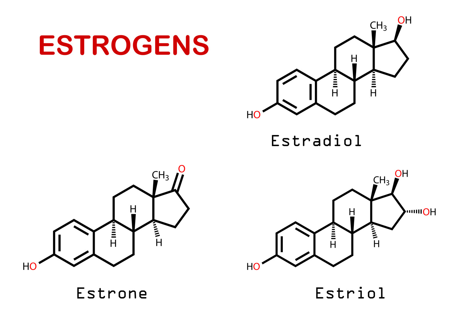 The increased amount of estrogen after a period causes glycogen (a sugar) to build up in the vaginal tissue.  Estrogen levels are highest after a period.  This can lead to yeast growth at this time.