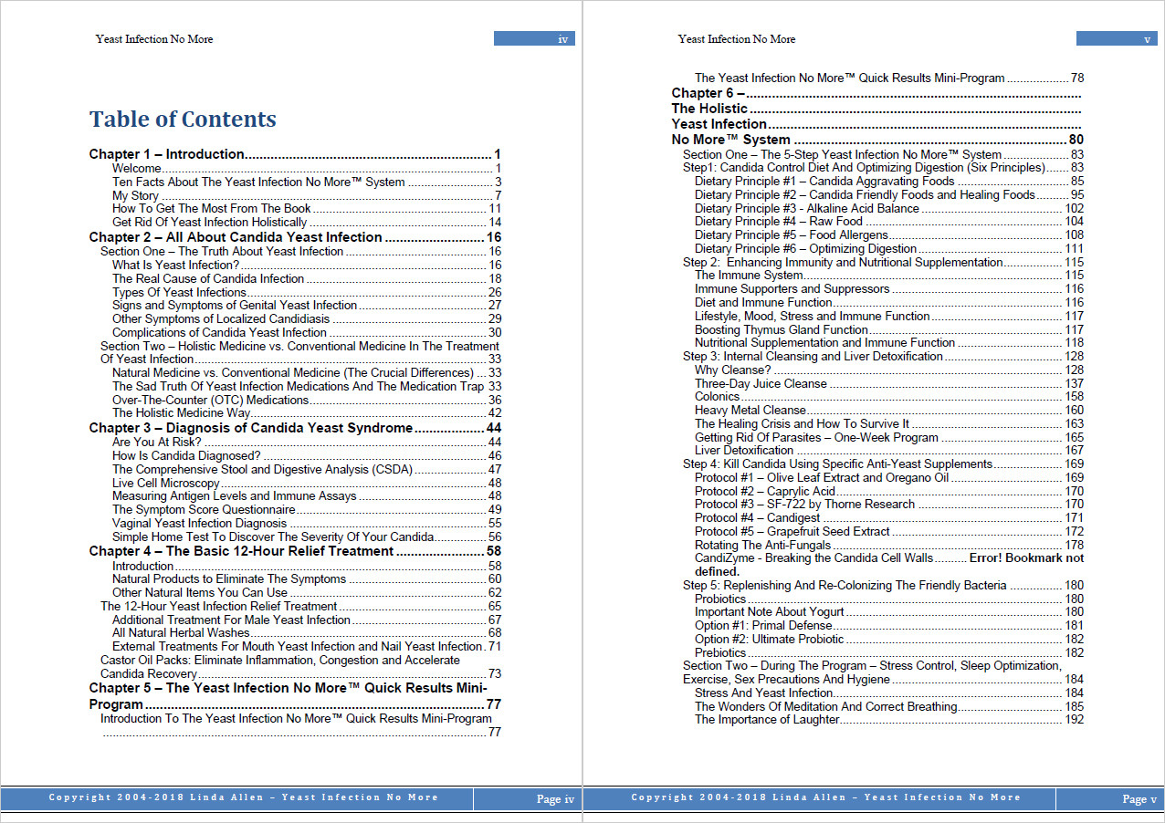 Linda Allen's book's table of contents (top part only).